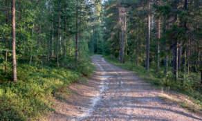 Gravel road III