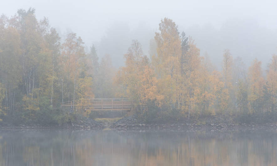 Fog by the Umeälven II