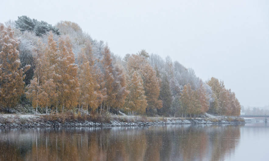 The river Umeälven in the snowfall III