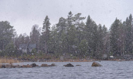 Another snow shower