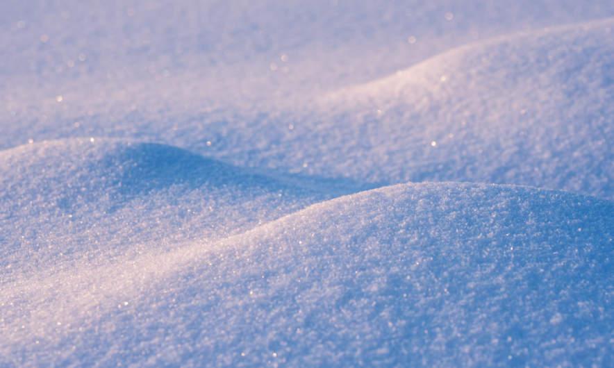 Hoping for snow (photo taken in Skelleftehamn January 2019)