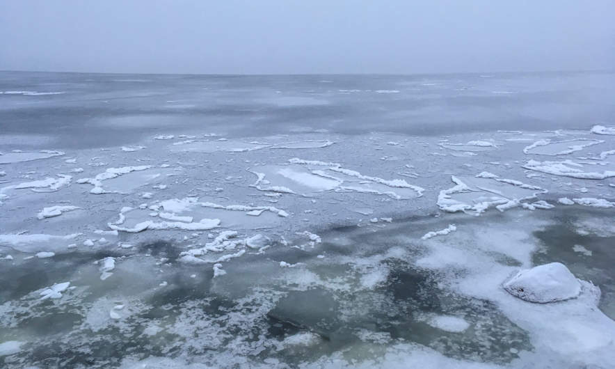 Fog and ice on the Baltic Sea in Skelleftehamn