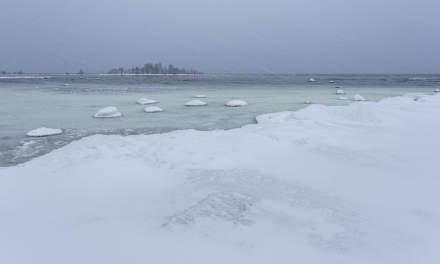 Snowy coast I