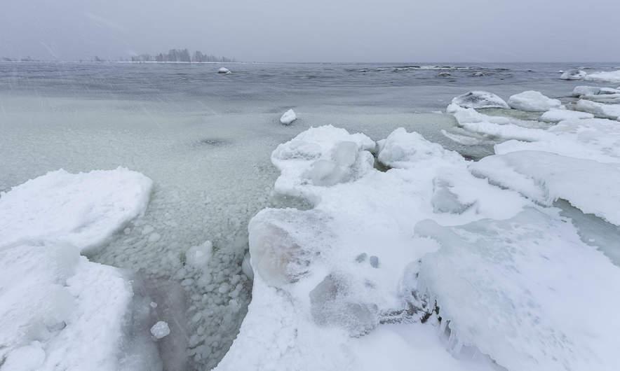 Snowy coast II