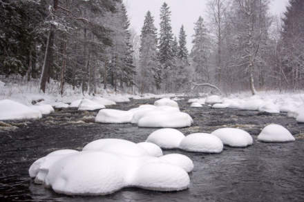 Snowy rocks in the river Bureälven