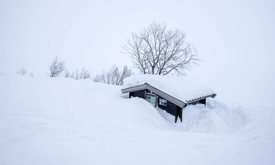 Kalfjell again