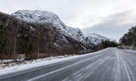 Norwegian road I