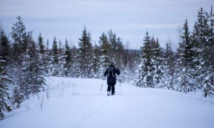 S. skiing ahead