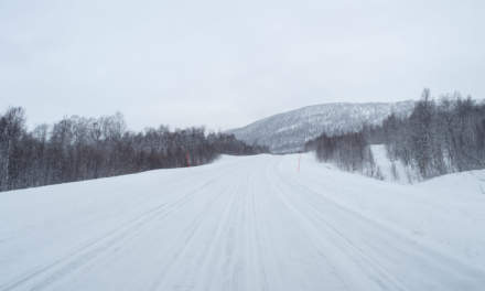 Through the windscreen VI – road 95 over the kalfjäll