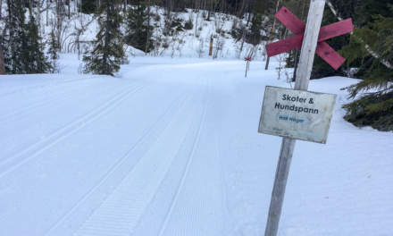 Cross-country ski-run