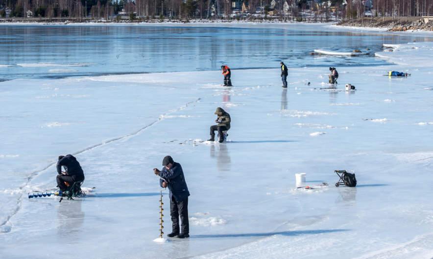 Ice fishers in Skelleftehamn