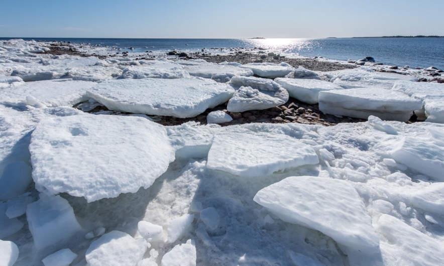 Stranded ice floes at Kågnäsudden