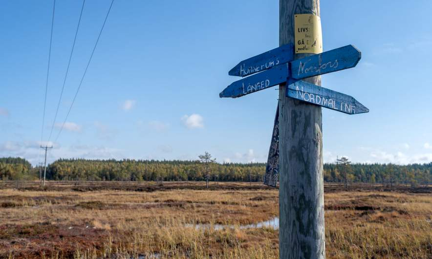A signpost in the middle of the bog