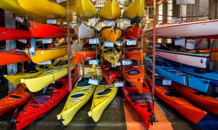 A selection of kayaks