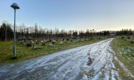 Promenade VI –icy path on the graveyard