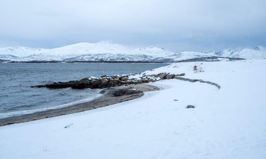 Snowy Telegrafbukta, Tromsø II
