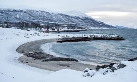 Snowy Telegrafbukta, Tromsø I