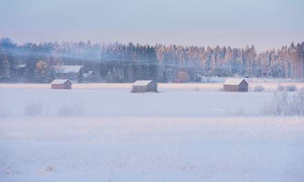 Foggy fields at Degernäs