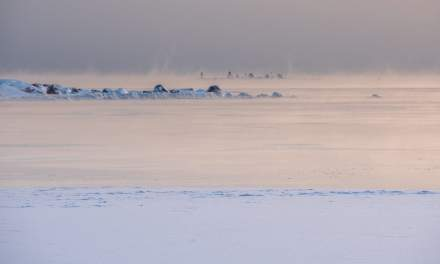 Ice fog on the horizon