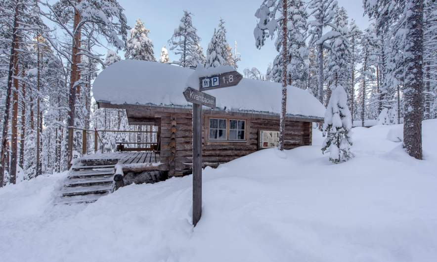 The forest cabin I