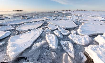 Ice floes on a frosty morning