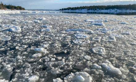 Ice floes had frozen together over night
