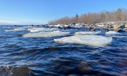 Ice floes in the lee of the island