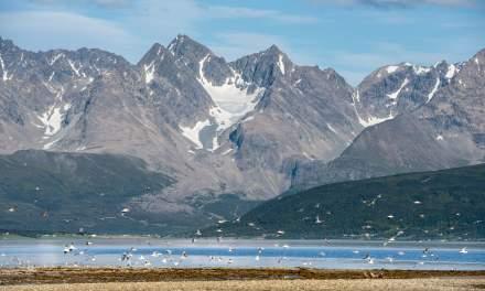 Lnygen alps as seen from Oldervik