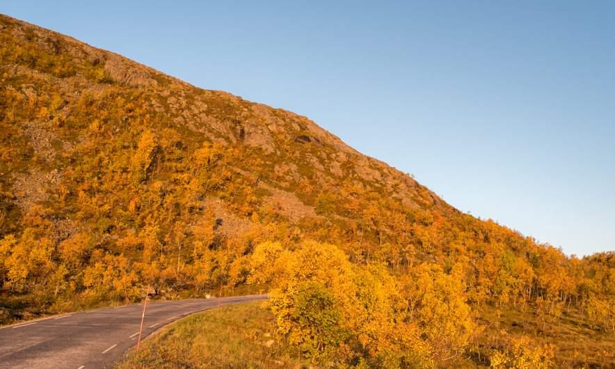 Road to Tromvik I