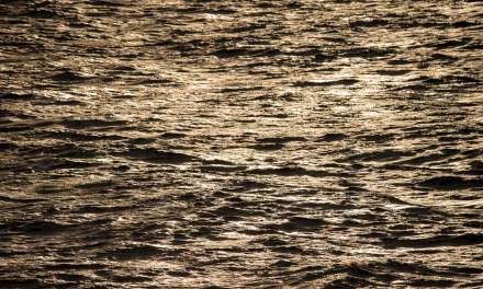 Water surface in the sun