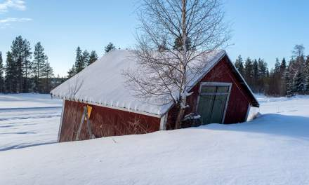 Old shed – day