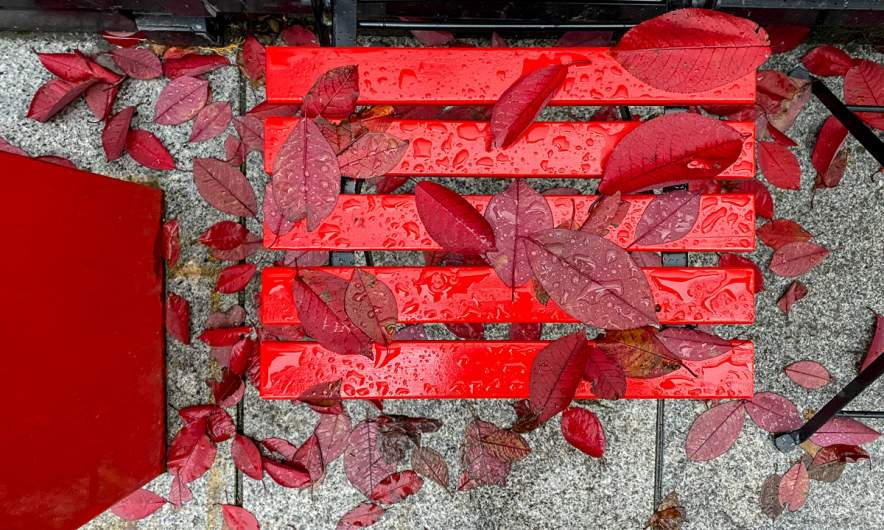 Red autumn in Tromsø
