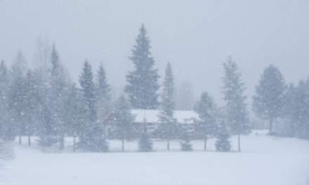 Snowfall in Kusfors