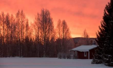 Sunrise in Kusfors II