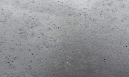 Rain, rain and rain