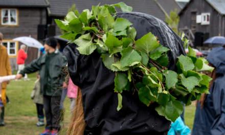 Wreath of birch